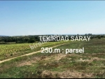 TEKİRDAĞ  SARAY  250.m  PARSEL